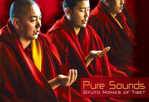 Pure-Sounds-RGB