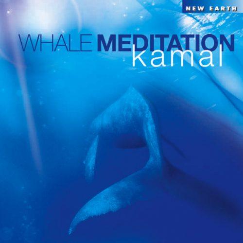 Whale-Meditation-RGB
